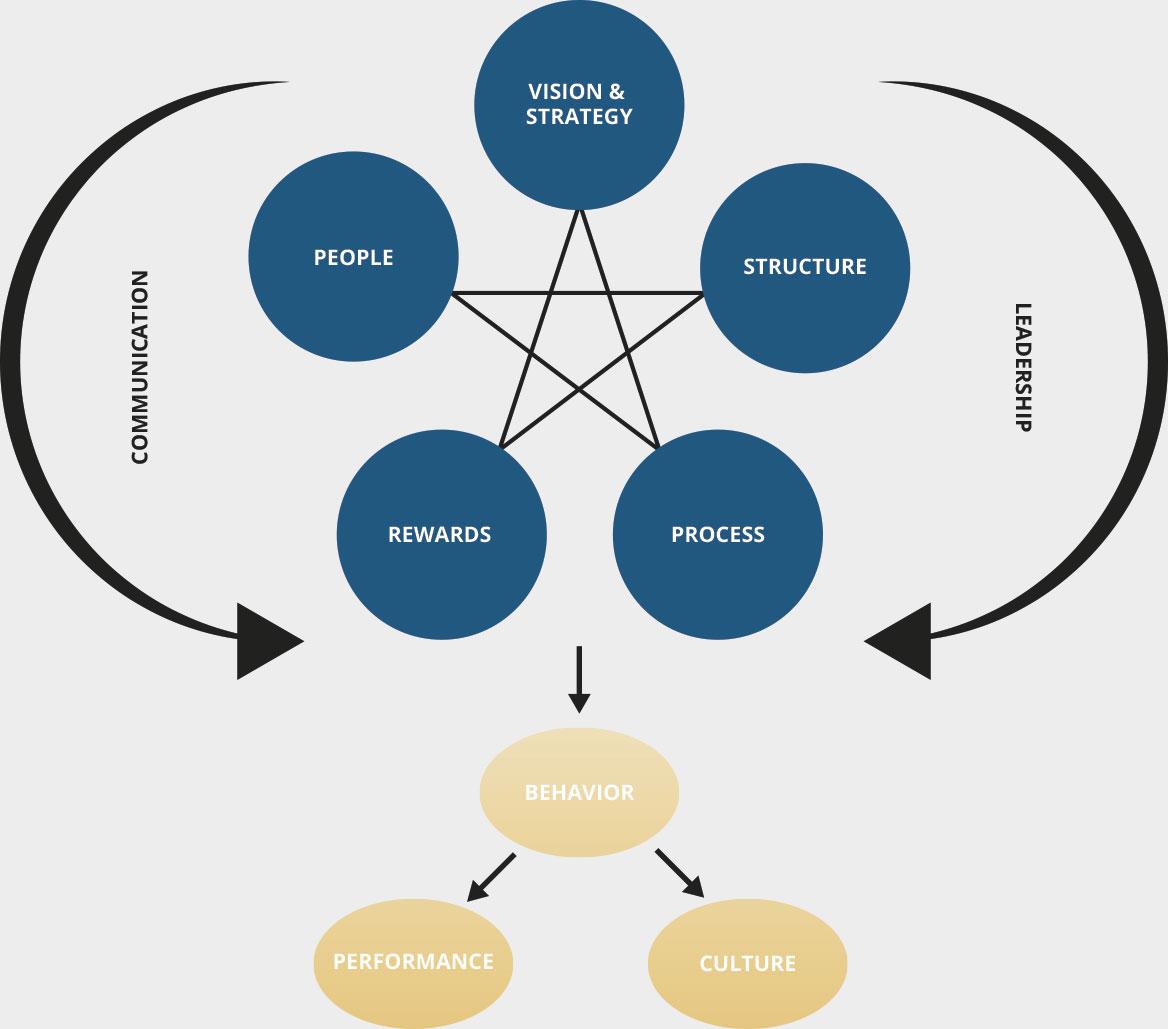 ELC Culture model